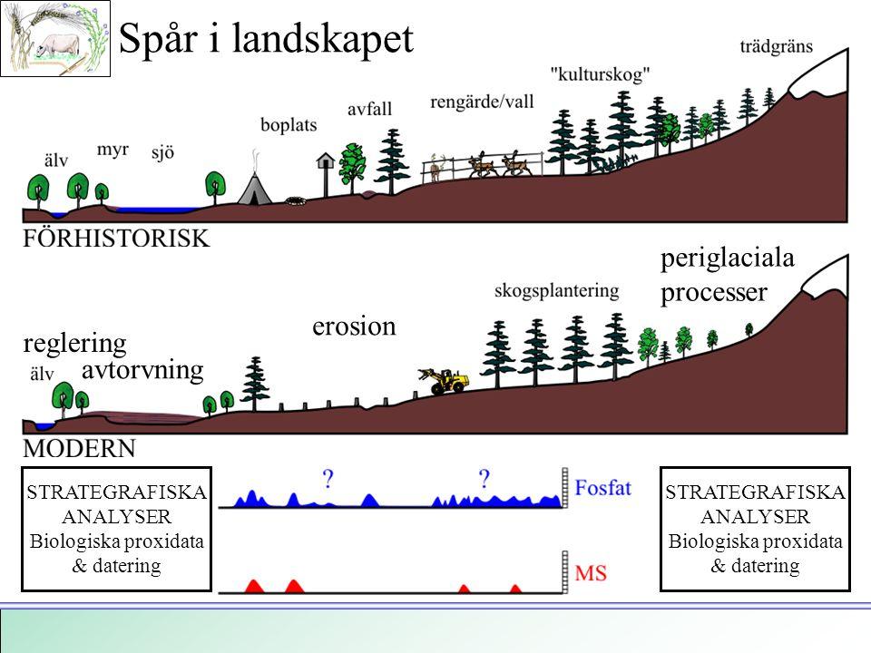 STRATEGRAFISKA ANALYSER Biologiska proxidata & datering STRATEGRAFISKA ANALYSER Biologiska proxidata & datering erosion avtorvning reglering periglaci