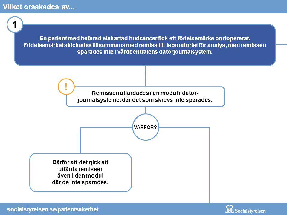 socialstyrelsen.se/patientsakerhet Gick fel för att...Vad hände? socialstyrelsen.se/patientsakerhet Vilket orsakades av... VARFÖR? Därför att det gick