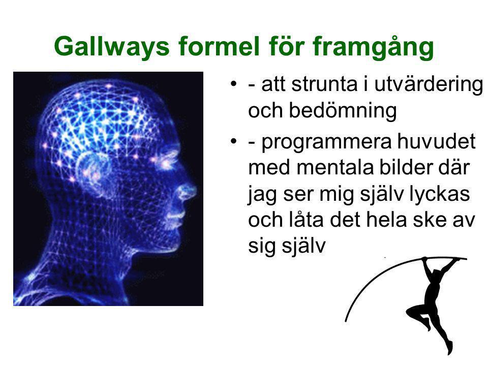 8 Gallways formel för framgång •- att strunta i utvärdering och bedömning •- programmera huvudet med mentala bilder där jag ser mig själv lyckas och l