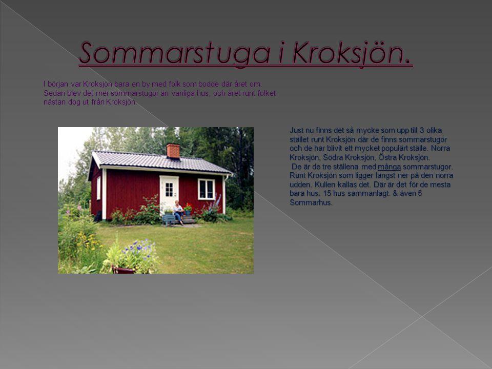 I början var Kroksjön bara en by med folk som bodde där året om.