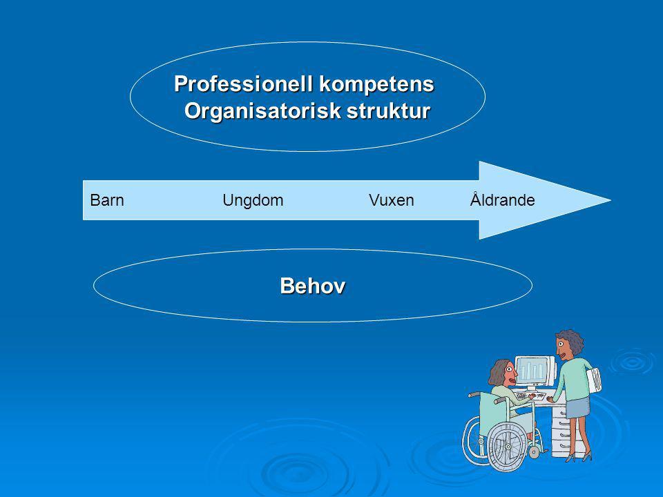 BarnUngdom Vuxen Åldrande Professionell kompetens Organisatorisk struktur Behov