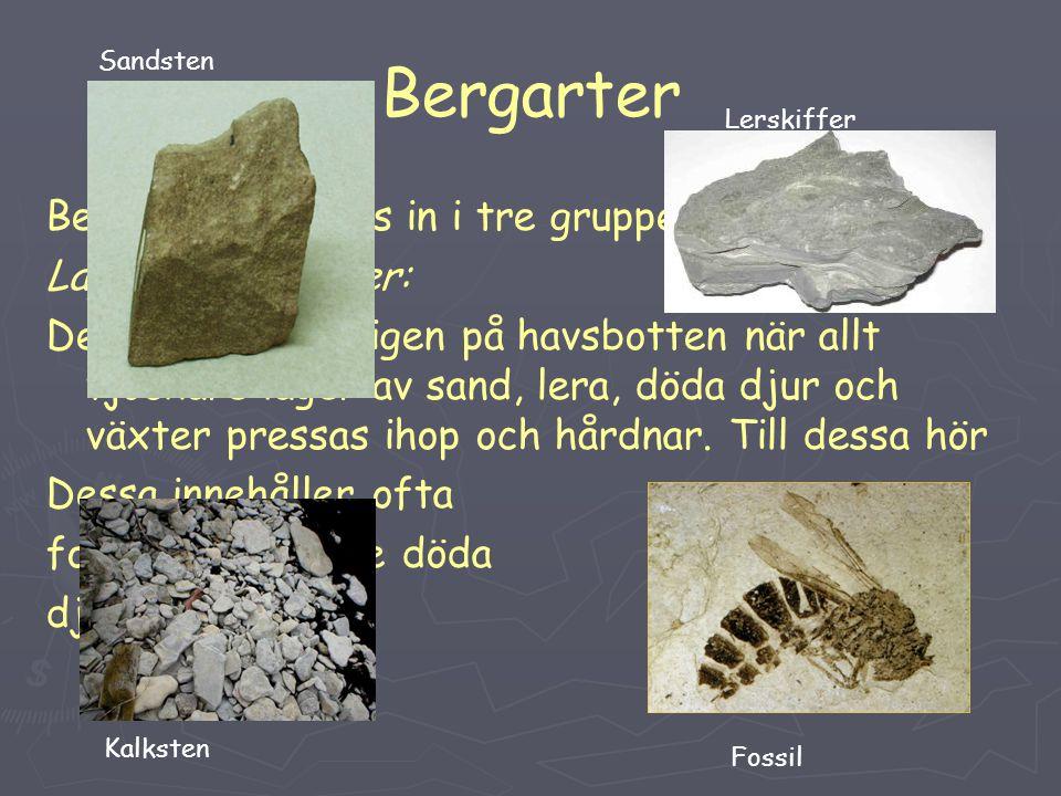Bergarter Bergarterna delas in i tre grupper: Lagrade bergarter: Dessa bildas vanligen på havsbotten när allt tjockare lager av sand, lera, döda djur