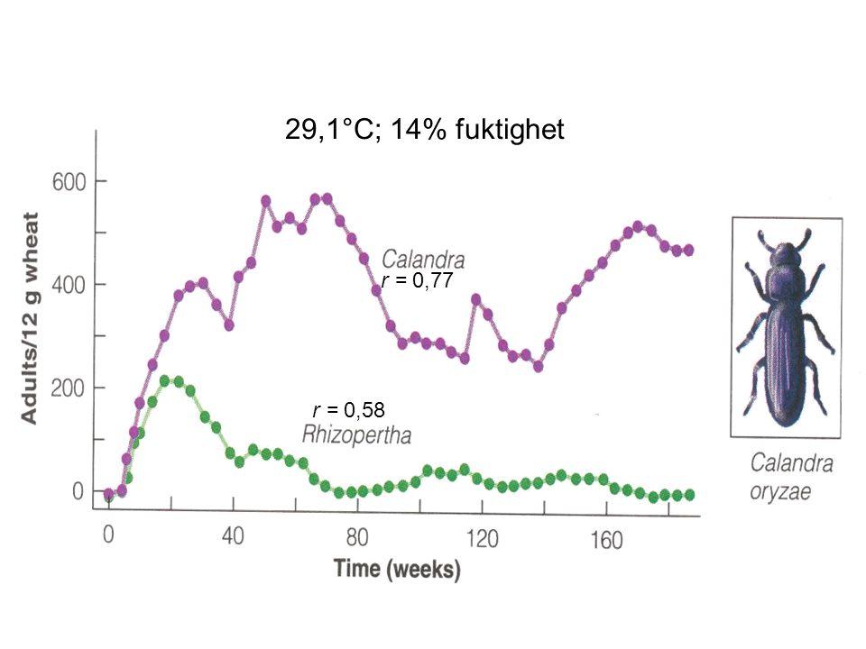 29,1°C; 14% fuktighet r = 0,77 r = 0,58