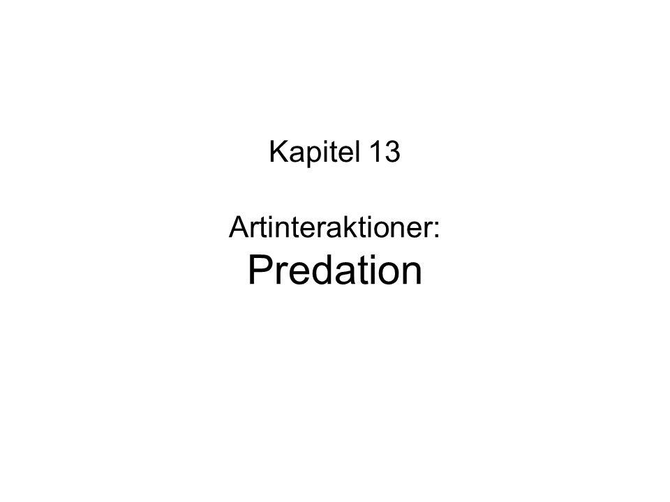 Artinteraktioner: Predation Kapitel 13