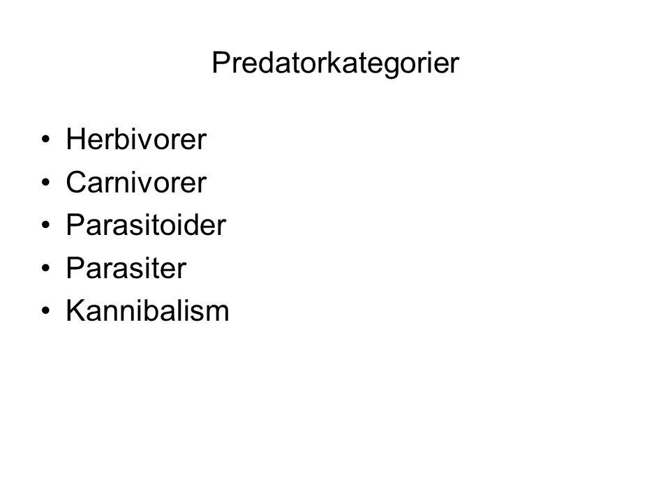 Predatorkategorier •Herbivorer •Carnivorer •Parasitoider •Parasiter •Kannibalism
