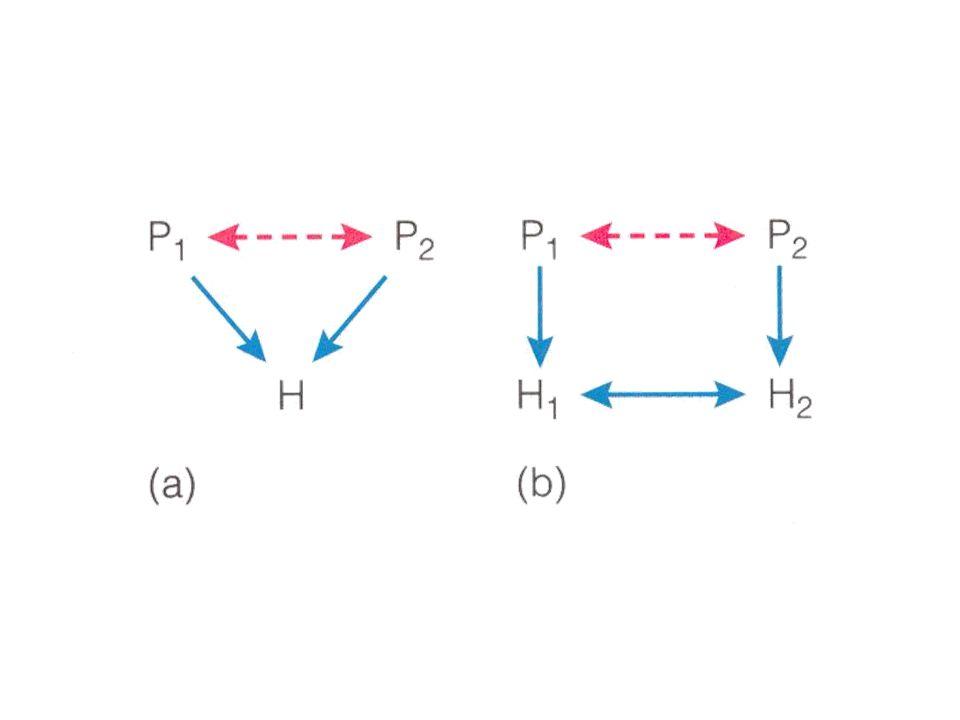 Predationsmodeller; diskreta generationer när P = 0 och N liten när P är liten och N = N eq