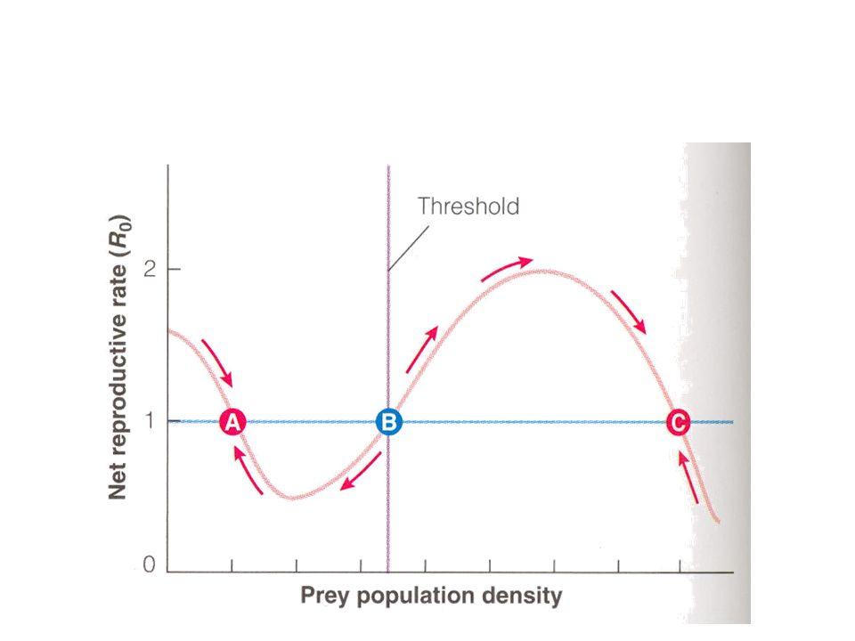 Introduktion av nya predatorer kan ge våldsamma effekter på bytespopulationen Fångster 1978-90 <>