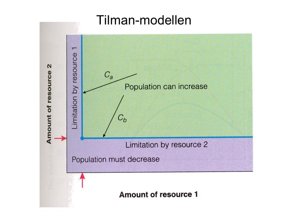 Tilman-modellen