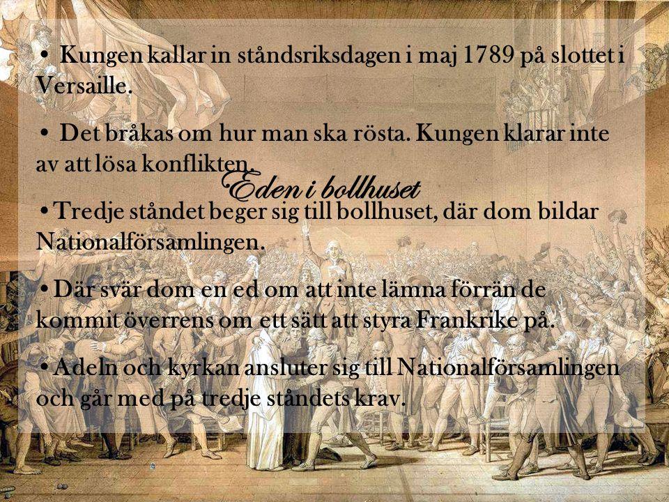 Stormningen av bastiljen • Bastiljen stormades för att folket trodde att kungen skulle försöka stoppa Nationalförsamlingen.