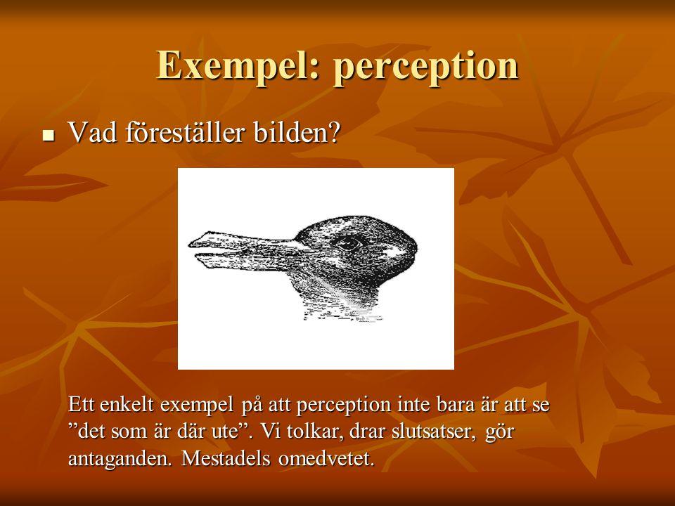 Exempel: perception  Vad föreställer bilden.