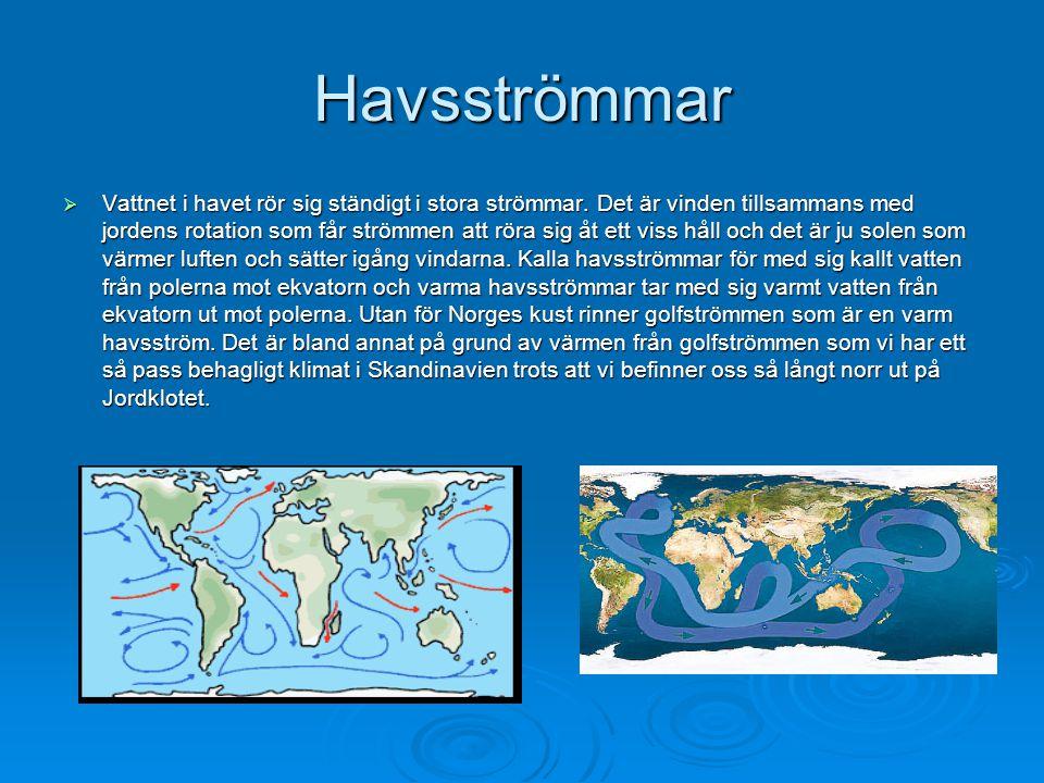 Havsströmmar  Vattnet i havet rör sig ständigt i stora strömmar. Det är vinden tillsammans med jordens rotation som får strömmen att röra sig åt ett