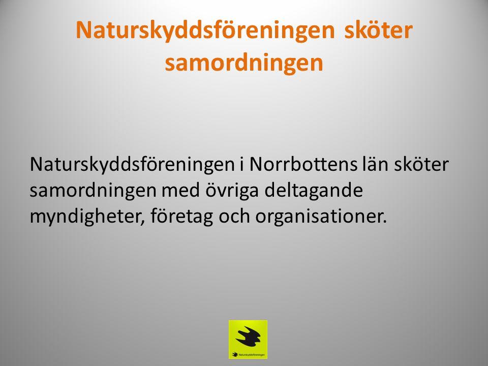 Naturskyddsföreningen sköter samordningen Naturskyddsföreningen i Norrbottens län sköter samordningen med övriga deltagande myndigheter, företag och o