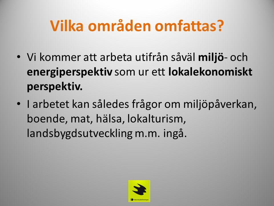 Tidningsbilaga Som en del i arbetet kommer det att tas fram en annonsbilaga som följer alla tidningar i länet (NSD, NK, Piteåtidningen, Haparandabladet).