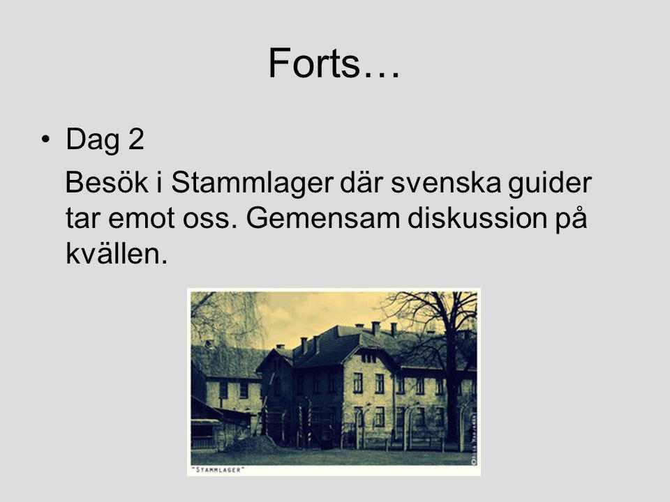 Forts… •Dag 2 Besök i Stammlager där svenska guider tar emot oss. Gemensam diskussion på kvällen.