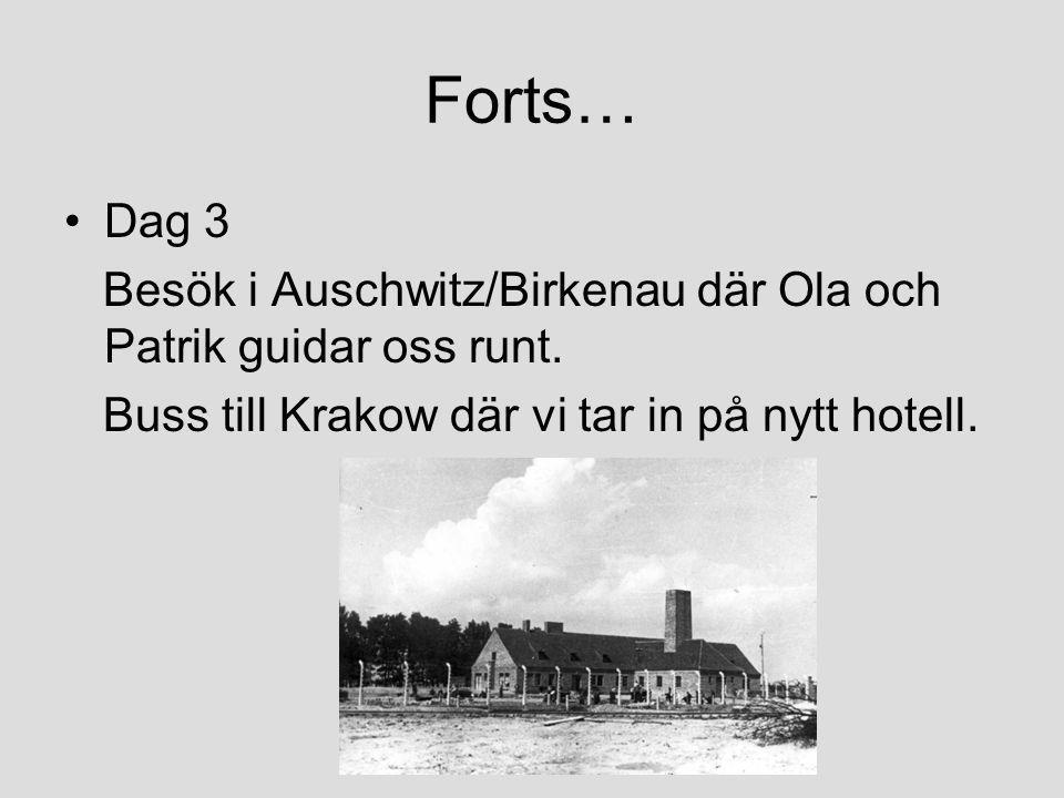 Forts… •Dag 3 Besök i Auschwitz/Birkenau där Ola och Patrik guidar oss runt. Buss till Krakow där vi tar in på nytt hotell.
