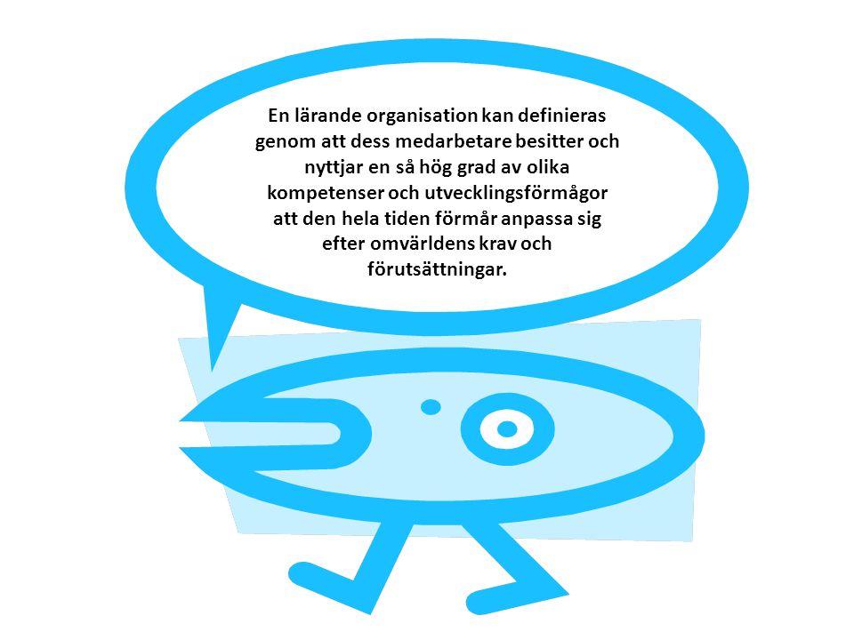 En lärande organisation kan definieras genom att dess medarbetare besitter och nyttjar en så hög grad av olika kompetenser och utvecklingsförmågor att