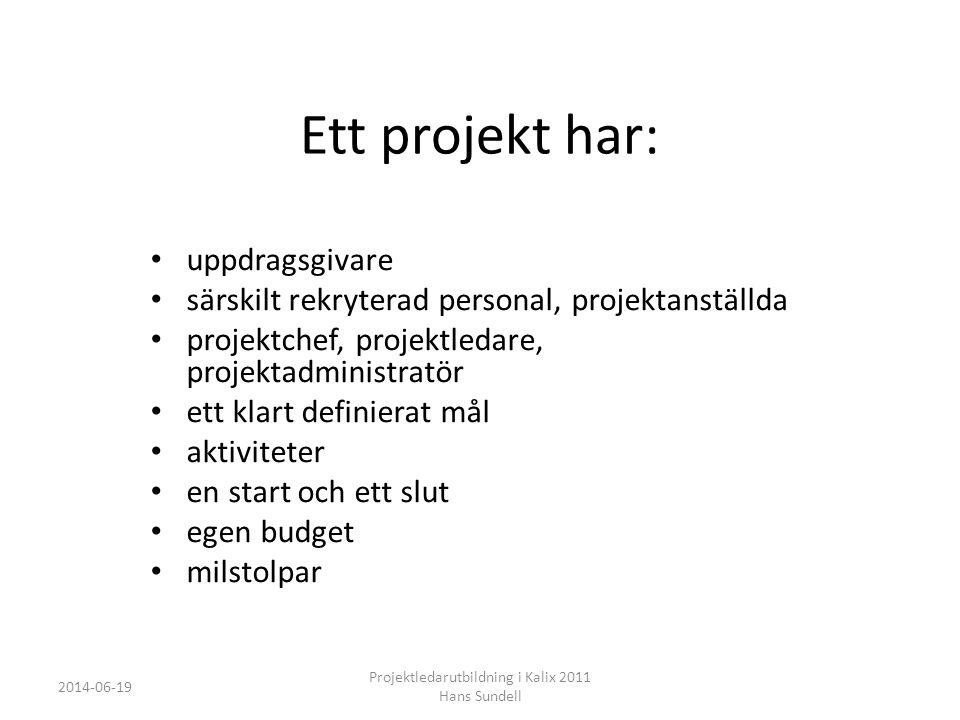 Vad är projektledning.
