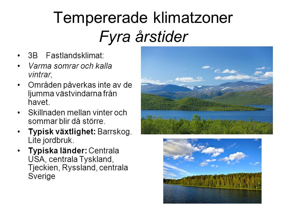 Tempererade klimatzoner Fyra årstider •3BFastlandsklimat: •Varma somrar och kalla vintrar, •Områden påverkas inte av de ljumma västvindarna från havet