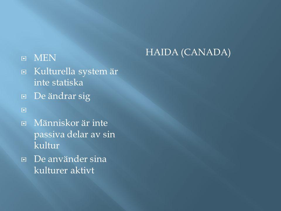 HAIDA (CANADA)  MEN  Kulturella system är inte statiska  De ändrar sig   Människor är inte passiva delar av sin kultur  De använder sina kulture