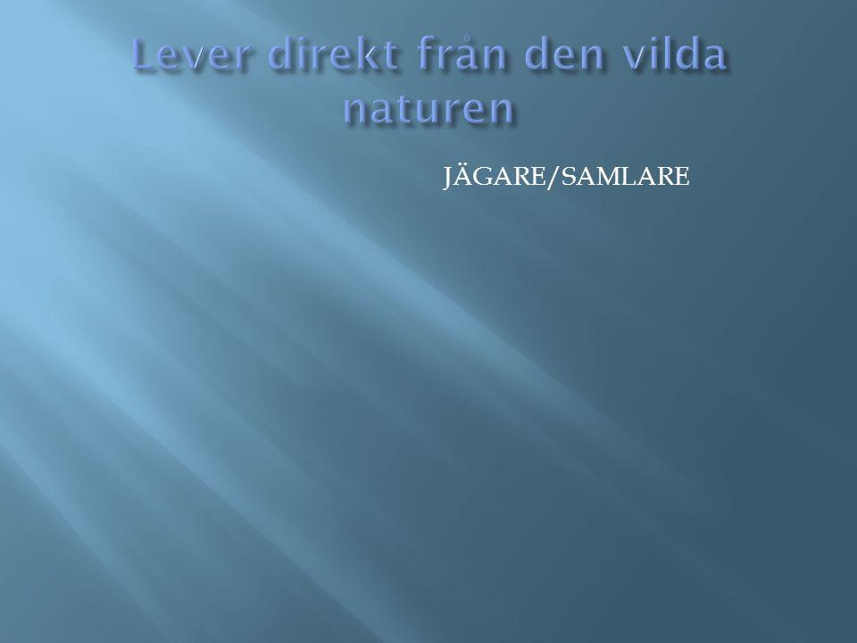 JÄGARE/SAMLARE