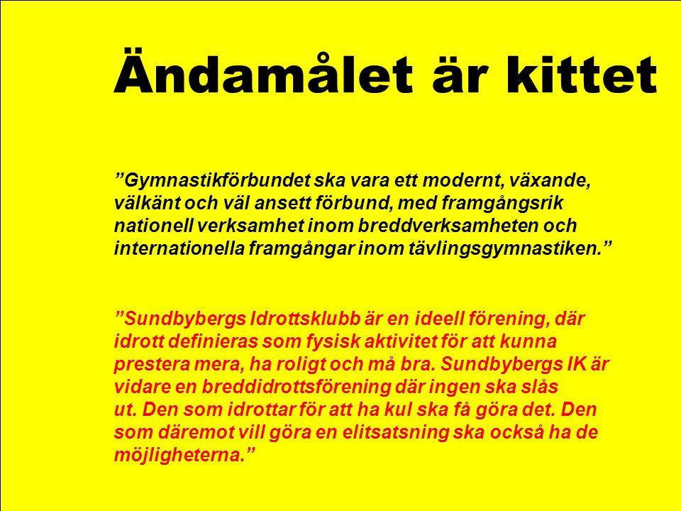 """Ändamålet är kittet """"Gymnastikförbundet ska vara ett modernt, växande, välkänt och väl ansett förbund, med framgångsrik nationell verksamhet inom bred"""