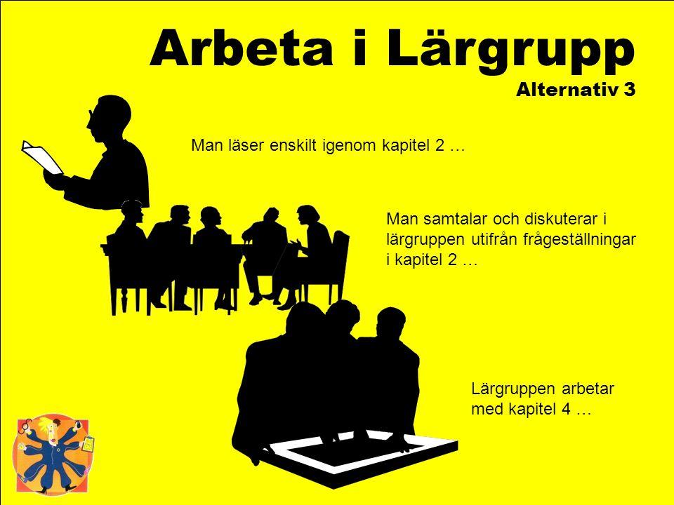Arbeta i Lärgrupp Alternativ 3 Man läser enskilt igenom kapitel 2 … Man samtalar och diskuterar i lärgruppen utifrån frågeställningar i kapitel 2 … Lä