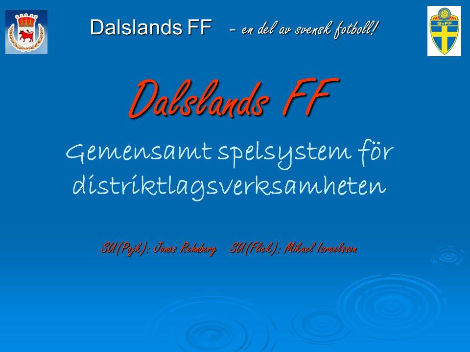 Gemensamt spelsystem för distriktlagsverksamheten Dalslands Fotbollsförbund har under 2013 beslutat följande upplägg gällande gemensamt spelsystem:   14 år: 4-3-3 med en individuell inriktning på spelsättet, dvs mycket 1 v 1-situationer i OFF och DEF.