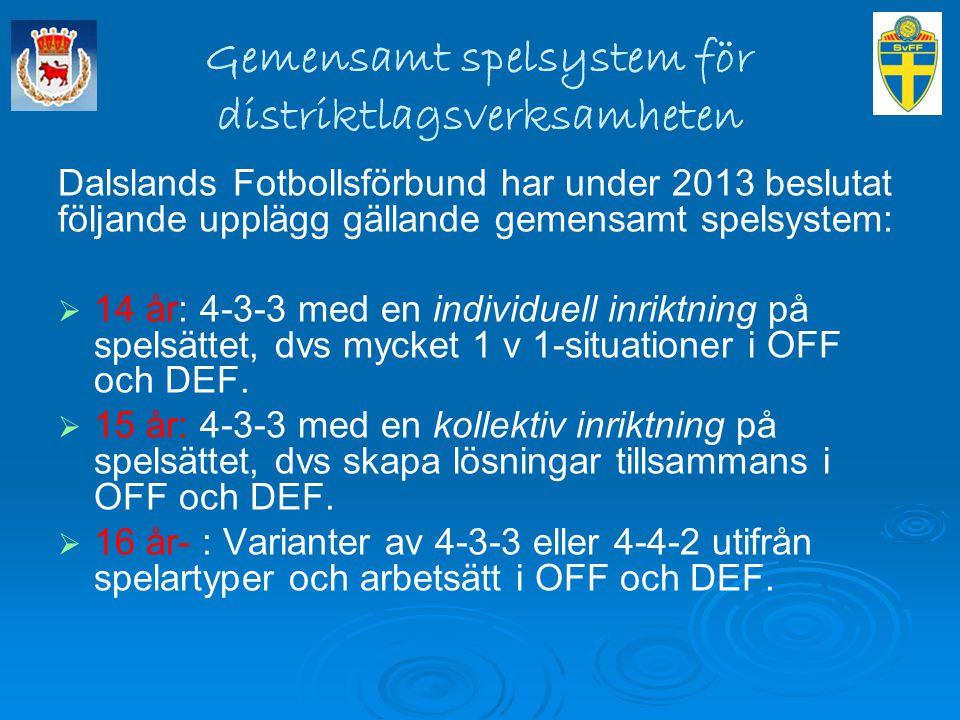 Gemensamt spelsystem för distriktlagsverksamheten Dalslands Fotbollsförbund har under 2013 beslutat följande upplägg gällande gemensamt spelsystem: 