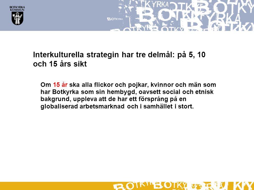Interkulturella strategin har tre delmål: på 5, 10 och 15 års sikt Om 15 år ska alla flickor och pojkar, kvinnor och män som har Botkyrka som sin hemb