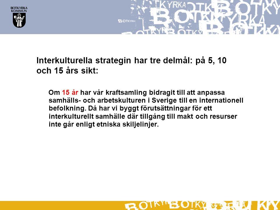 Interkulturella strategin har tre delmål: på 5, 10 och 15 års sikt: Om 15 år har vår kraftsamling bidragit till att anpassa samhälls- och arbetskultur