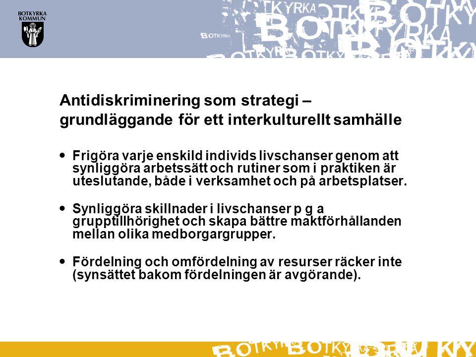 Antidiskriminering som strategi – grundläggande för ett interkulturellt samhälle  Frigöra varje enskild individs livschanser genom att synliggöra arb