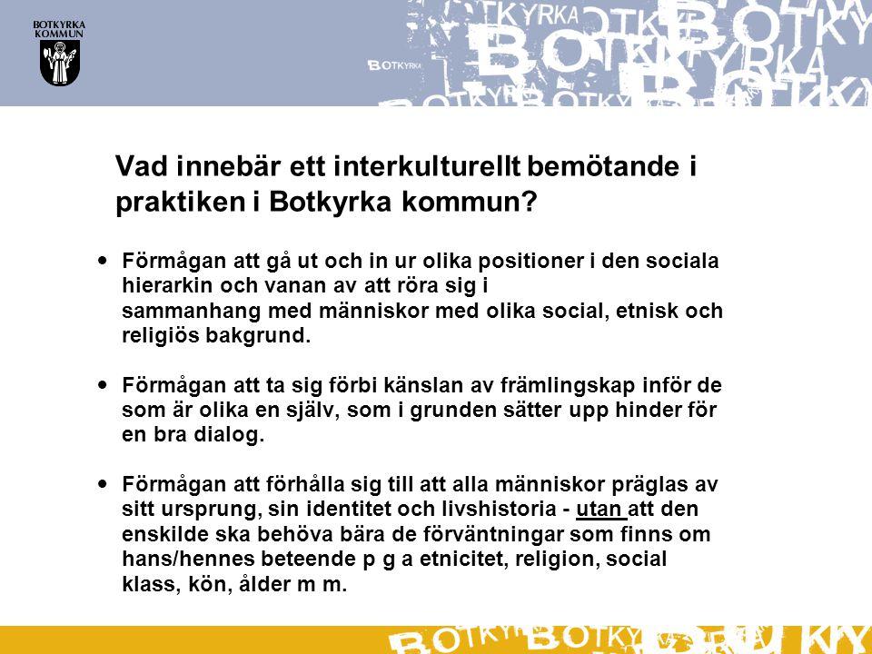 Vad innebär ett interkulturellt bemötande i praktiken i Botkyrka kommun?  Förmågan att gå ut och in ur olika positioner i den sociala hierarkin och v