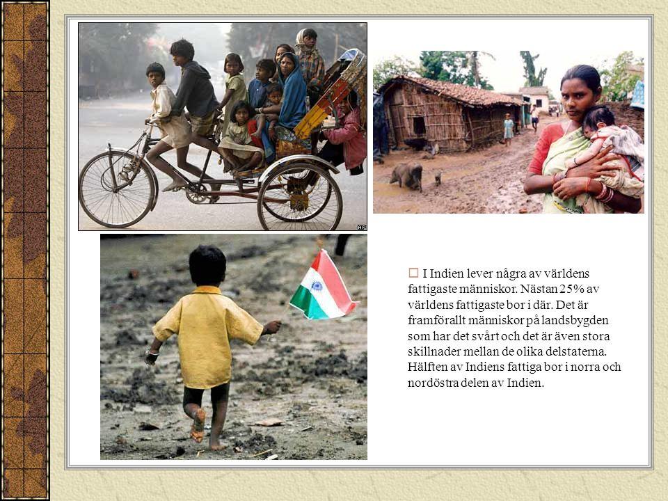 Men i Indien bor även några av världens rikaste människor.