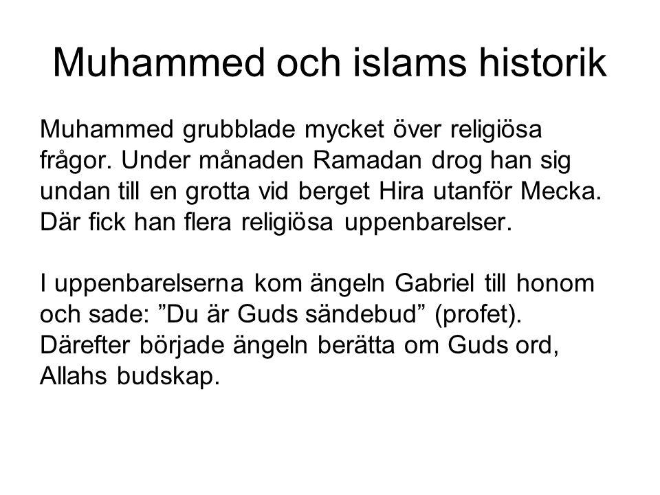 Muhammed och islams historik Muhammed grubblade mycket över religiösa frågor. Under månaden Ramadan drog han sig undan till en grotta vid berget Hira