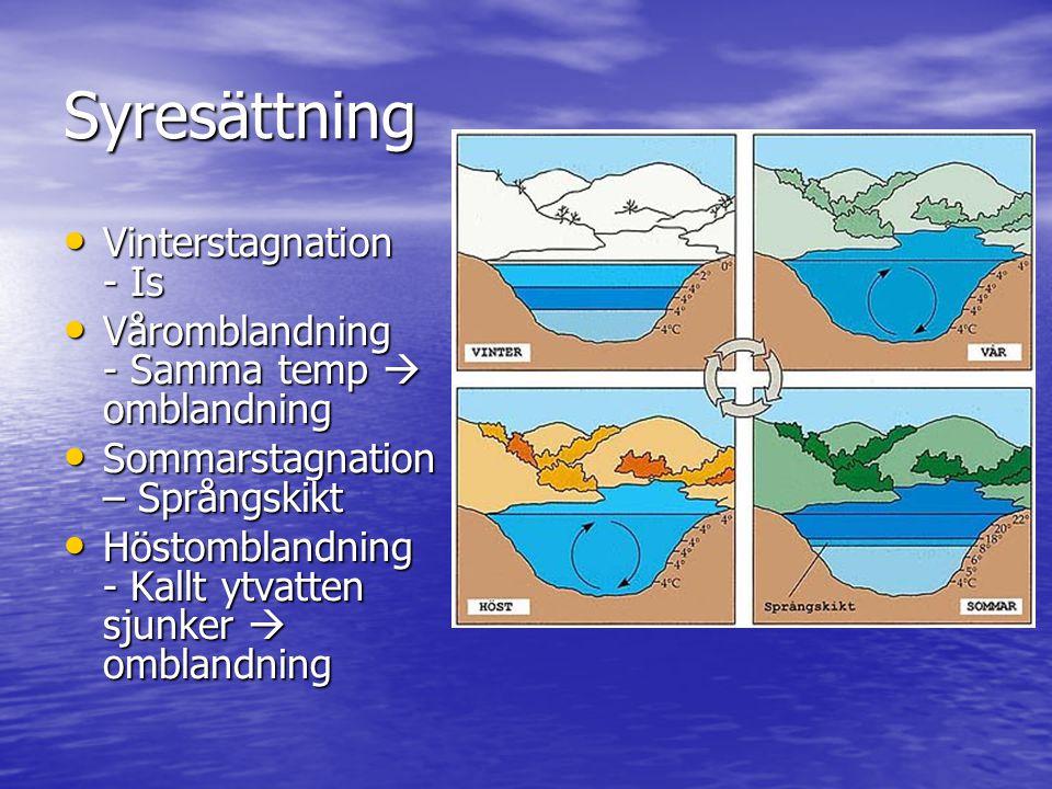 Syresättning • Vinterstagnation - Is • Våromblandning - Samma temp  omblandning • Sommarstagnation – Språngskikt • Höstomblandning - Kallt ytvatten s