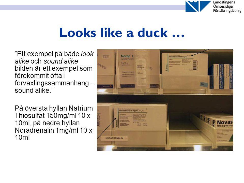 """Looks like a duck … """"Ett exempel på både look alike och sound alike bilden är ett exempel som förekommit ofta i förväxlingssammanhang  sound alike."""""""
