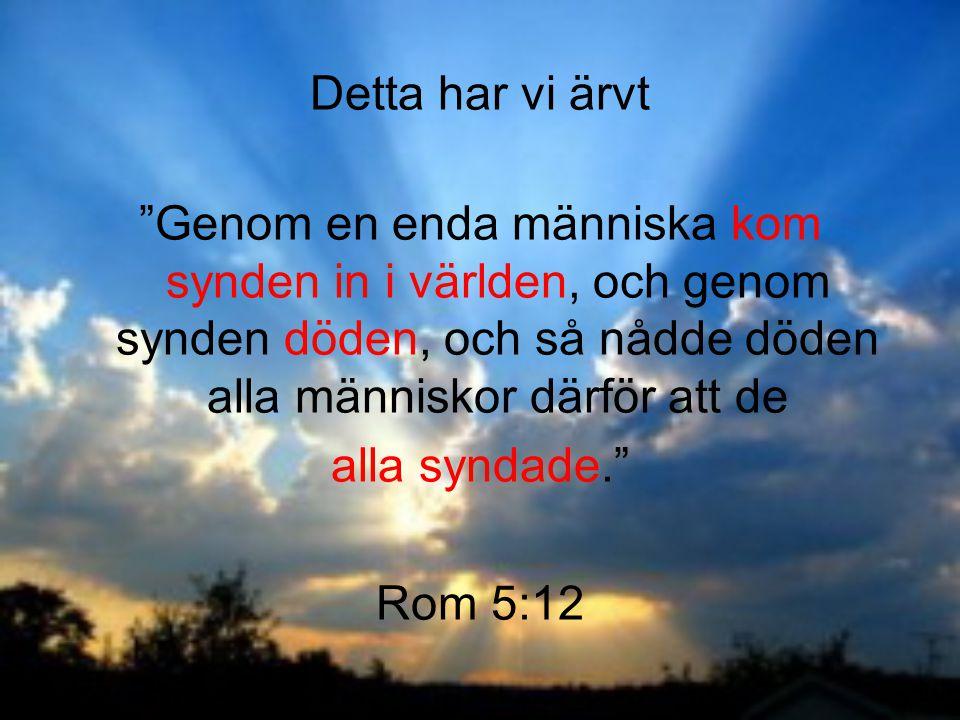 """Detta har vi ärvt """"Genom en enda människa kom synden in i världen, och genom synden döden, och så nådde döden alla människor därför att de alla syndad"""