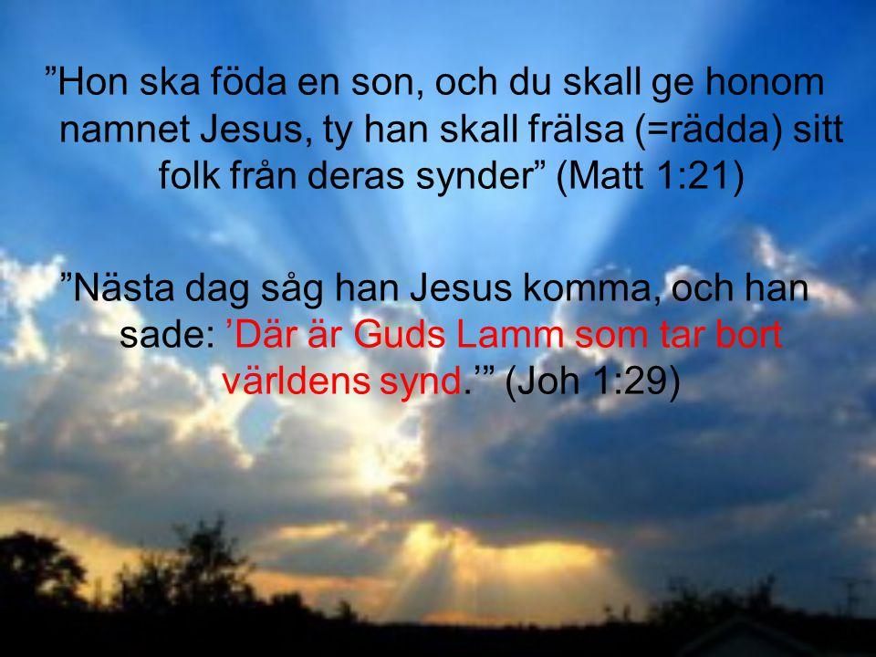 """""""Nästa dag såg han Jesus komma, och han sade: 'Där är Guds Lamm som tar bort världens synd.'"""" (Joh 1:29)"""