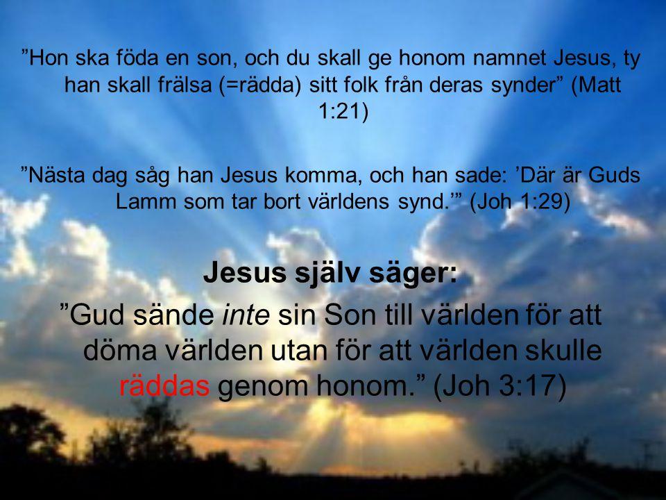 """""""Hon ska föda en son, och du skall ge honom namnet Jesus, ty han skall frälsa (=rädda) sitt folk från deras synder"""" (Matt 1:21) """"Nästa dag såg han Jes"""
