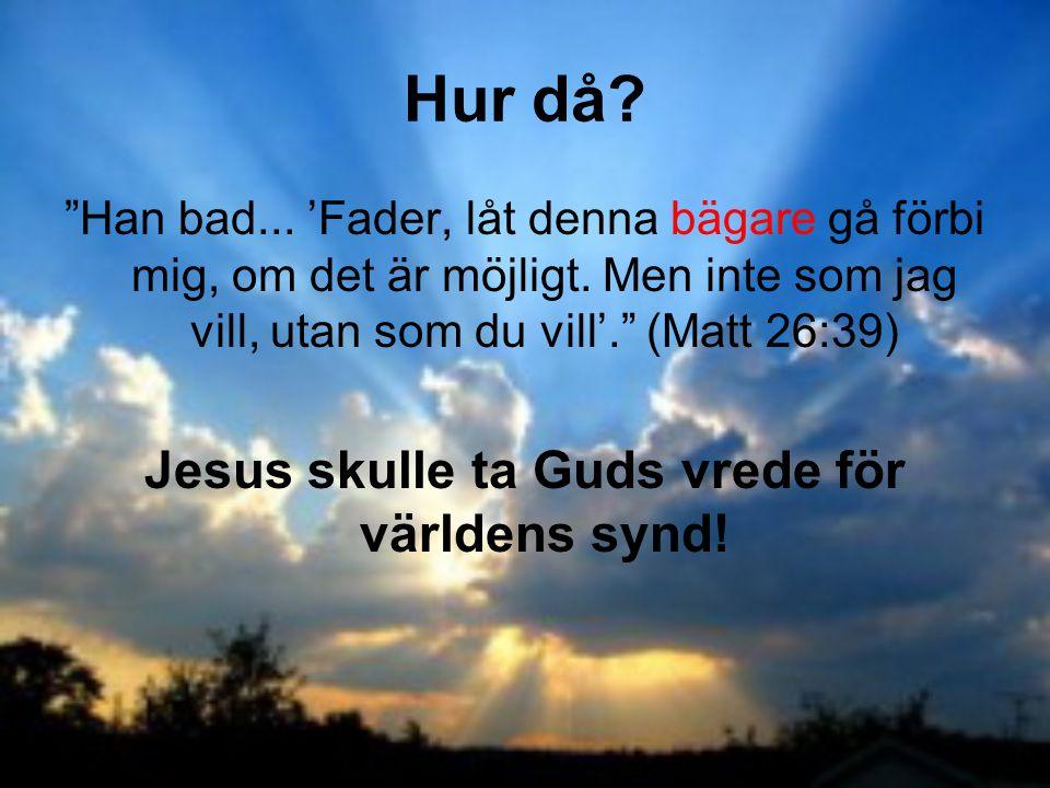 """""""Han bad... 'Fader, låt denna bägare gå förbi mig, om det är möjligt. Men inte som jag vill, utan som du vill'."""" (Matt 26:39) Jesus skulle ta Guds vre"""
