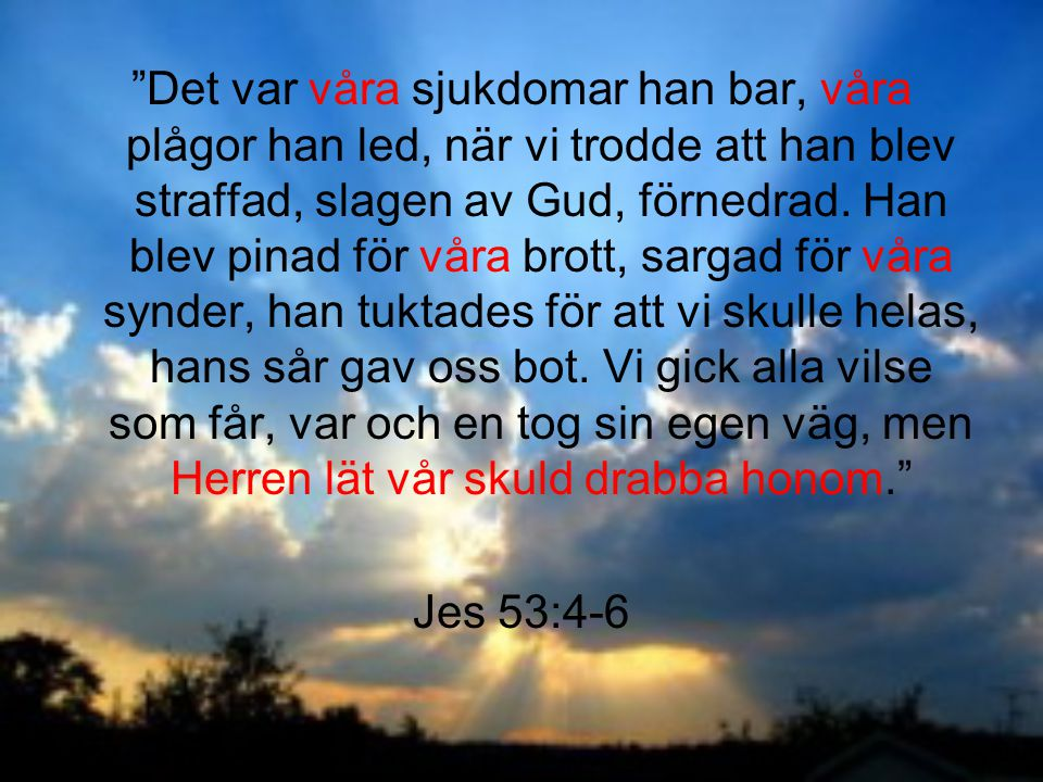 """""""Det var våra sjukdomar han bar, våra plågor han led, när vi trodde att han blev straffad, slagen av Gud, förnedrad. Han blev pinad för våra brott, sa"""