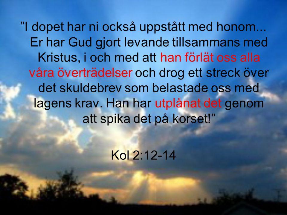 """""""I dopet har ni också uppstått med honom... Er har Gud gjort levande tillsammans med Kristus, i och med att han förlät oss alla våra överträdelser och"""