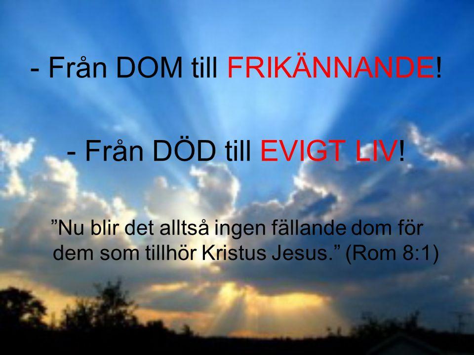 """-Från DOM till FRIKÄNNANDE! -Från DÖD till EVIGT LIV! """"Nu blir det alltså ingen fällande dom för dem som tillhör Kristus Jesus."""" (Rom 8:1)"""