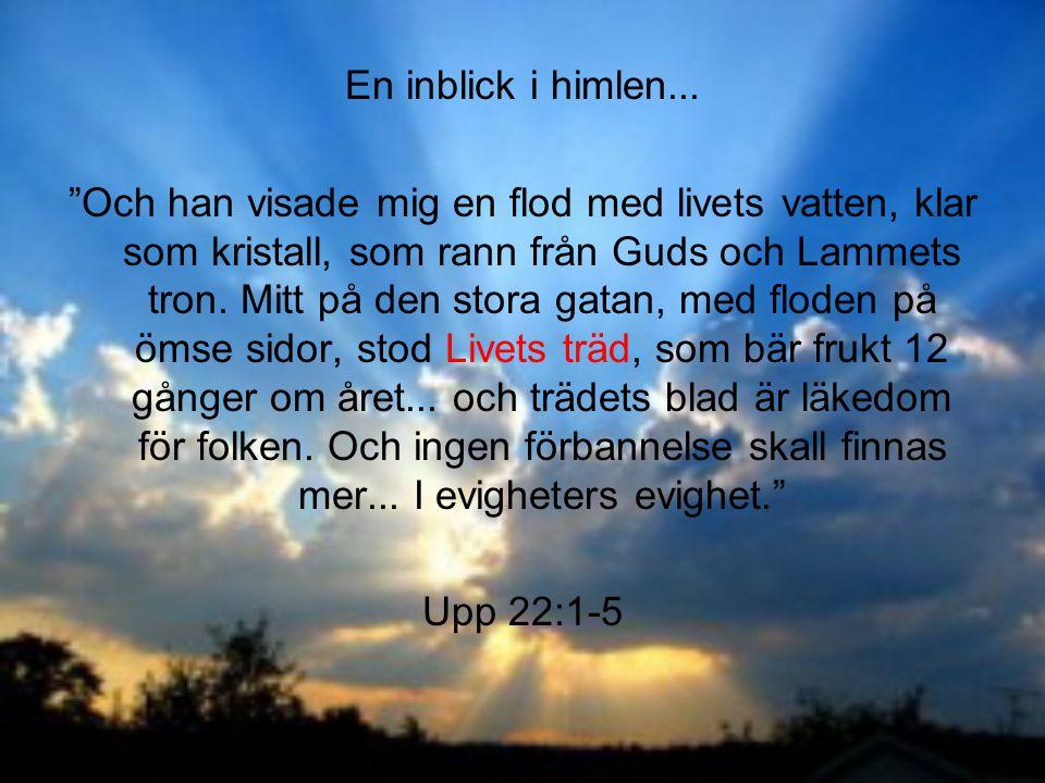 """En inblick i himlen... """"Och han visade mig en flod med livets vatten, klar som kristall, som rann från Guds och Lammets tron. Mitt på den stora gatan,"""