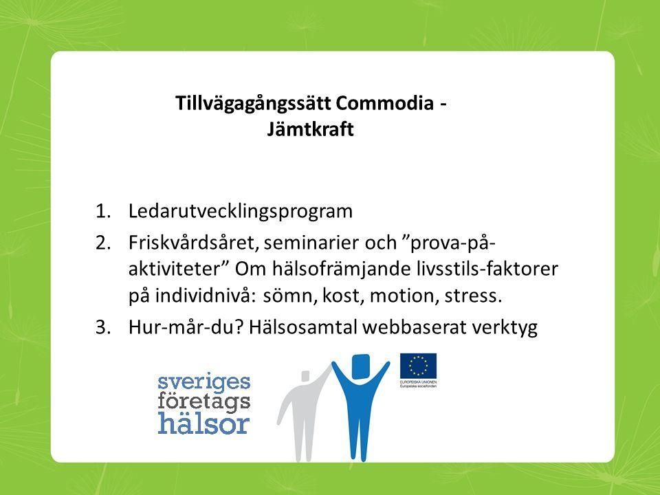 """Tillvägagångssätt Commodia - Jämtkraft 1.Ledarutvecklingsprogram 2.Friskvårdsåret, seminarier och """"prova-på- aktiviteter"""" Om hälsofrämjande livsstils-"""