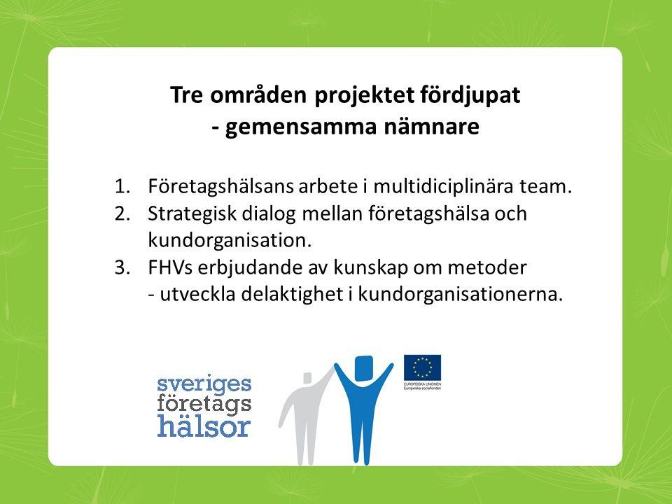 Tre områden projektet fördjupat - gemensamma nämnare 1.Företagshälsans arbete i multidiciplinära team. 2.Strategisk dialog mellan företagshälsa och ku