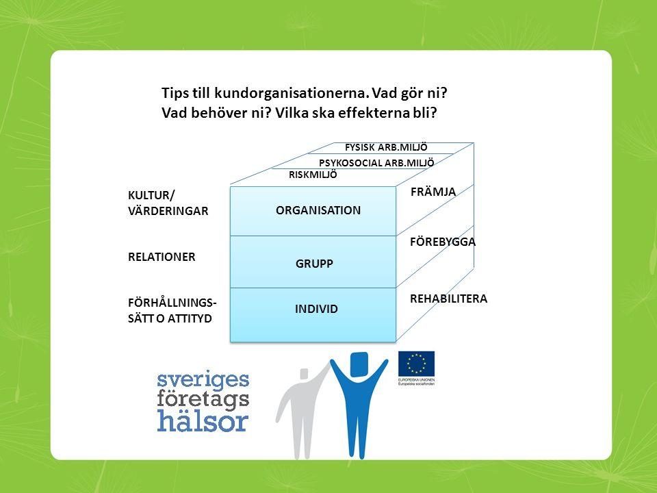 GRUPP INDIVID ORGANISATION FRÄMJA FÖREBYGGA REHABILITERA RISKMILJÖ PSYKOSOCIAL ARB.MILJÖ FYSISK ARB.MILJÖ KULTUR/ VÄRDERINGAR RELATIONER FÖRHÅLLNINGS-