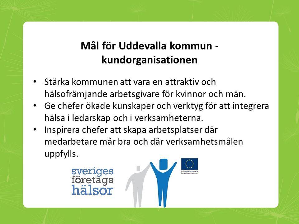 Tillvägagångssätt Previa – Uddevalla kommun • Utgick från och kartlade nuläget i organisationen.