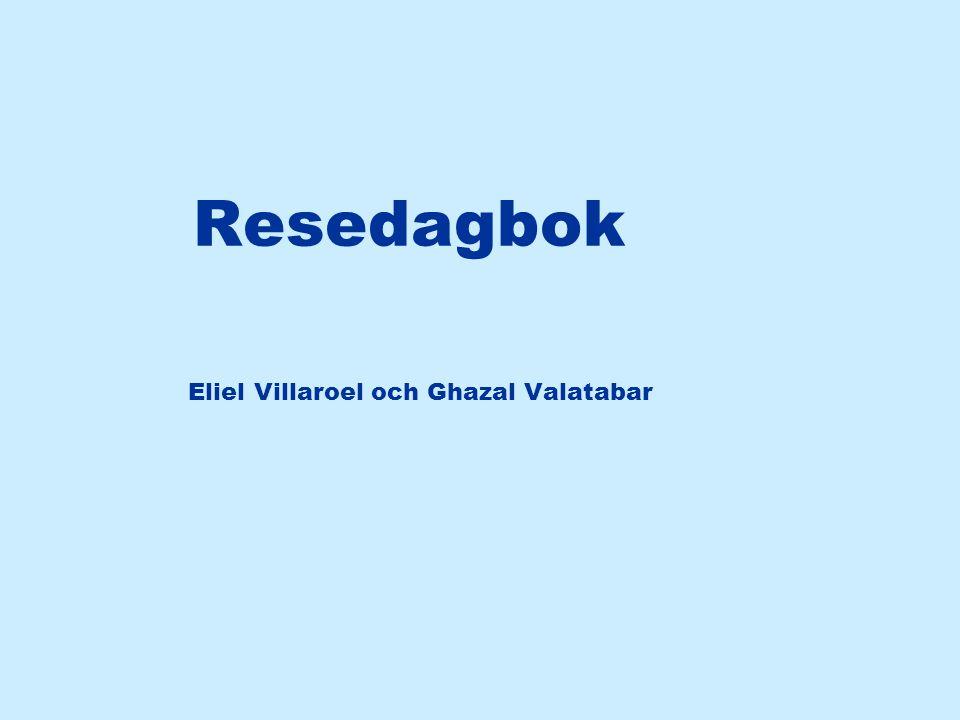 Resedagbok Eliel Villaroel och Ghazal Valatabar