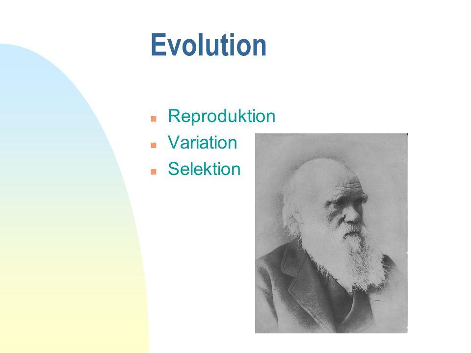 Evolution n Reproduktion n Variation n Selektion